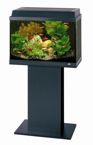 Aquarium Tanks & Stands