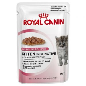 RC Kitten Instinctive in Jelly (12x85g)