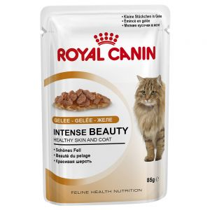 RC Cat Intense Beauty in Jelly (12x85g)