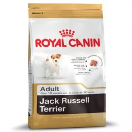 RC Jack Russell Terrier (1.5kg)